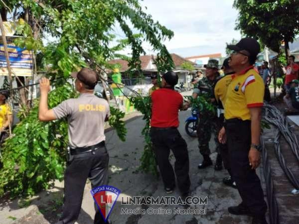 Quick Respon, Polresta Sidoarjo lakukan pengamanan lokasi Pohon dan Tiang Listrik Tumbang di Krian