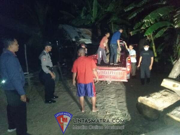 Diduga Hasil Illegal Logging, 89 Kayu Jati Dari Kawasan Taman Nasional Baluran