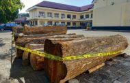 Ilegal Loging Asal Banyuwangi Di Amankan Polres Situbondo