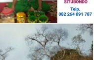 Pengobatan Alternatif Supranatural Bersama Aba Muhammad Desa Kukusan Situbondo